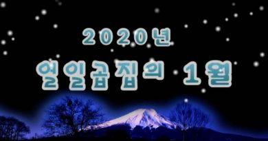 열일곱집의 2020년 1월