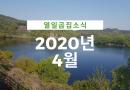 열일곱집의 2020년4월