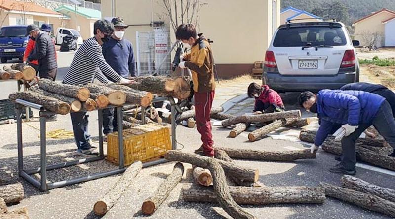 합천군 농업창업단지 입교생 공동 실습농장 운영