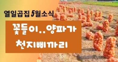 합천군 열일곱집 2021년5월