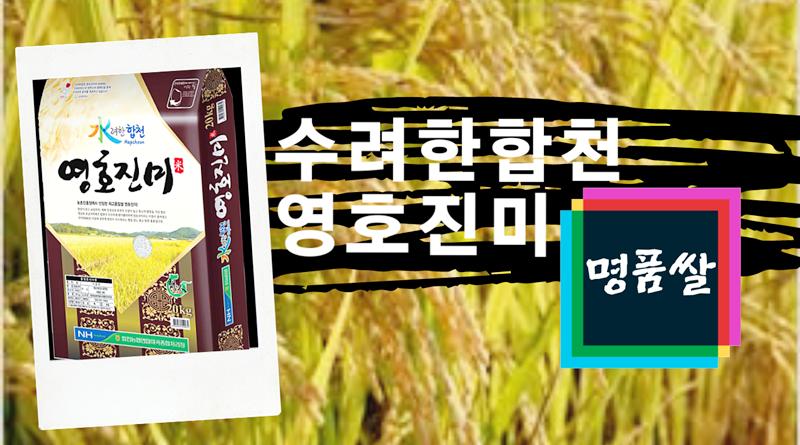 「수(水)려한 합천 영호진미」 경남 우수 브랜드쌀 2년 연속 우수상 수상