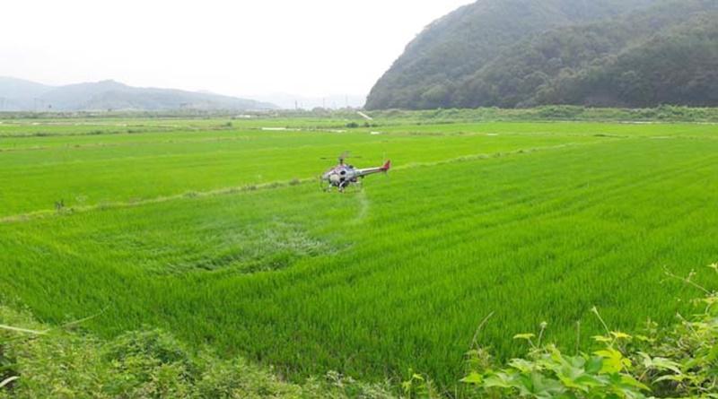 합천 농업의 새로운 도전과 변화